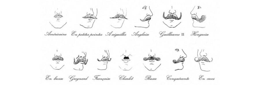 Soin de la moustache et de la barbe